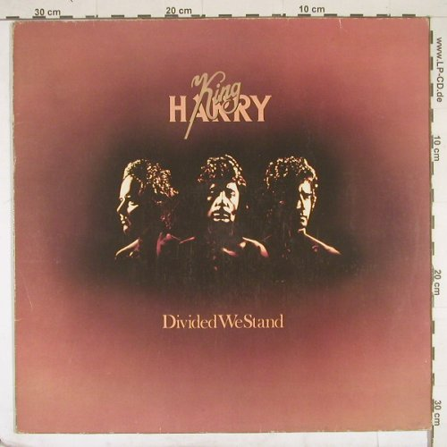 King,Harry: Divided We Stand, m-/vg+, EMI(064-06435), D, 77 - LP - B2046 - 4,00 Euro