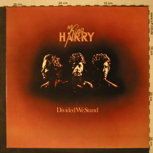 King Harry: Divided We Stand, EMI(064-06 435), D, 1977 - LP - C7548 - 6,00 Euro