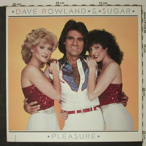 Rowland,Dave & Sugar: Pleasure, co, Elektra(5E-525), US, 1981 - LP - C7611 - 5,00 Euro