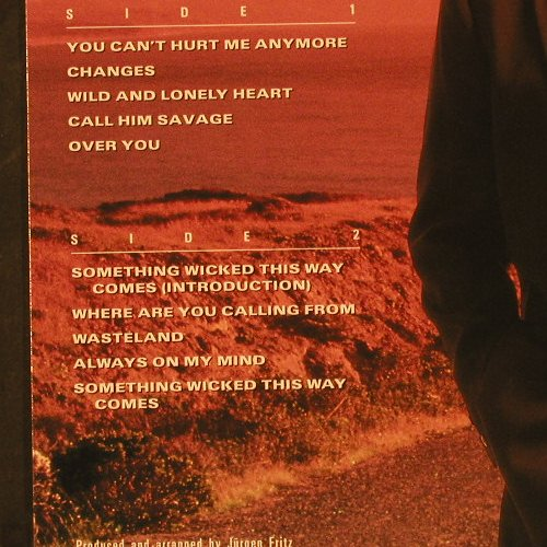 Hofmann,Peter: Wild And Lonely Heart, CBS(467534 1), NL, 1990 - LP - C9745 - 5,00 Euro