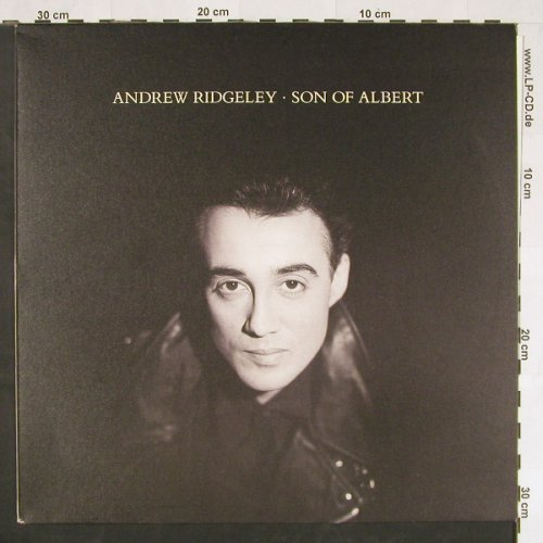 Ridgeley,Andrew: Son Of Albert, CBS(466717 1), NL, 1990 - LP - C9755 - 2,50 Euro