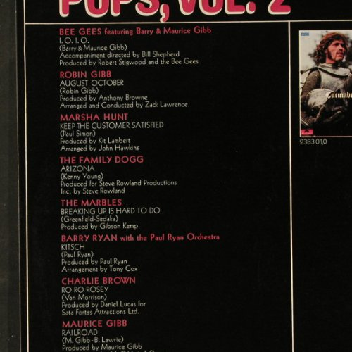 V.A.Top of the Pops: Vol.2 , 12Tr, Polydor(2480 007), D, 1970 - LP - E2598 - 5,00 Euro