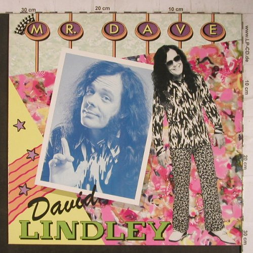 Lindley,David: Mr.Dave, WEA(252 161-1), D, 1985 - LP - F7510 - 5,00 Euro