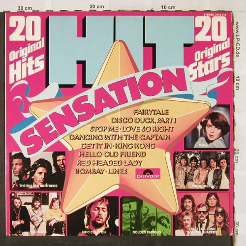 V.A.Hit Sensation-20 Orignal Hits: Rick Dees&...James Brown, Polydor(2413 313), D,  - LP - H3618 - 4,00 Euro