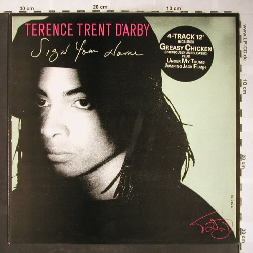 D'Arby,Terence Trent: Sign Your Name/Under my Thumb..., CBS(651315 6), NL, 1987 - 12inch - H6063 - 2,50 Euro