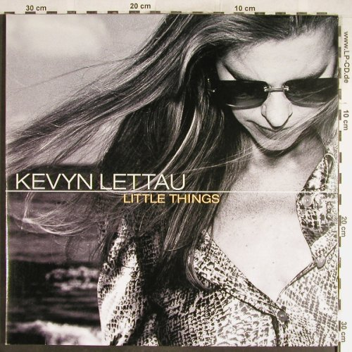 Lettau,Kevyn: Little Things, Foc,Promo,kl Welle, Universal(145877), , 2001 - LP - H6514 - 7,50 Euro
