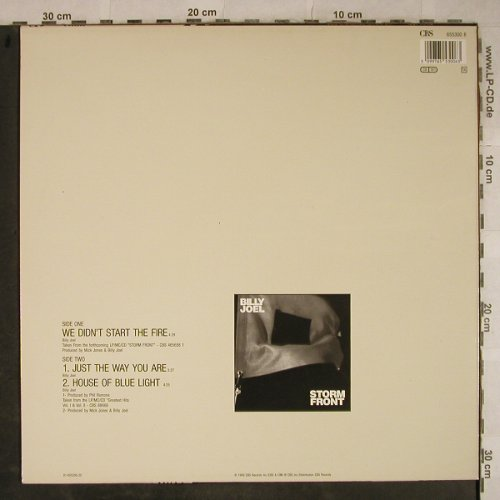 Joel,Billy: We Didn't Start The Fire+2, CBS(655300 6), NL, 1989 - 12inch - H9398 - 3,00 Euro