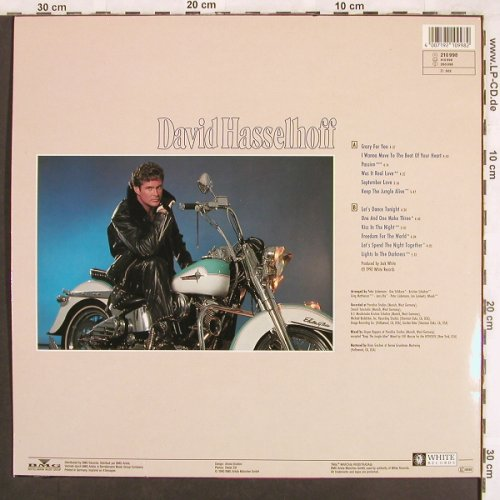 Hasselhoff,David: Crazy For You, White(613 546-213), D, 1990 - LP - X3517 - 5,00 Euro