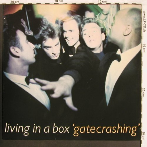 Living In A Box: Gatecrashing, Chrysalis(209 835), D, 1989 - LP - X3536 - 6,00 Euro