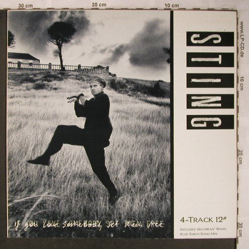 Sting: If You Love Sombody Set...*3+1, AM(392 018-1), NL, 1985 - 12inch - X5278 - 7,50 Euro