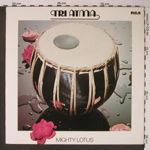 Tri Atma: Mighty Lotus, RCA Victor(PL 28402), D,like new, 1980 - LP - X6640 - 30,00 Euro