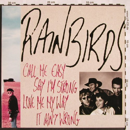Rainbirds: Call Me Easy Say I'm Strong Love Me, Mercury(838 176-1), D, Foc, 1989 - LP - X792 - 4,00 Euro