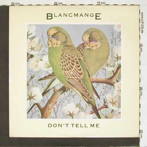 Blancmange: Don't Tell Me+1, London(BLANX 7), UK, 1984 - 12inch - A3246 - 4,00 Euro