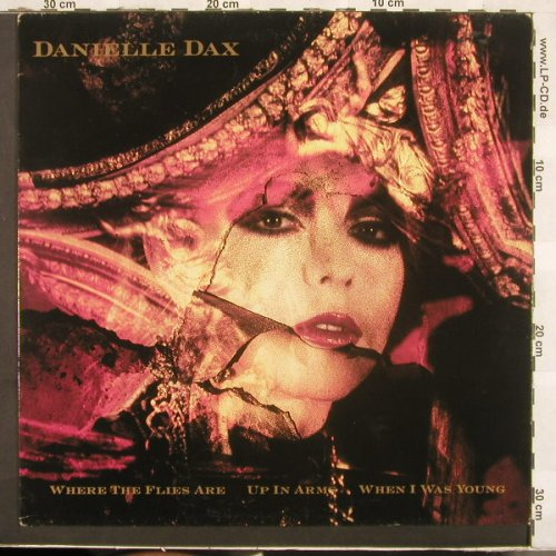 Dax,Danielle: Where The Flies Are+2, Awsome(AOR 6T), UK, 86 - 12inch - C3062 - 5,00 Euro