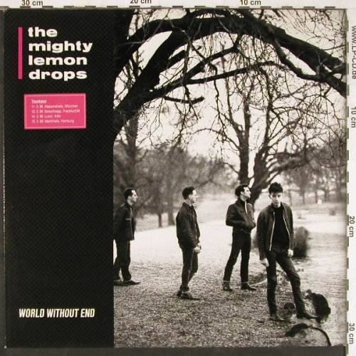 Mighty Lemon Drops: World Without End, Chrysalis(208 861), D, 1988 - LP - E2879 - 5,00 Euro