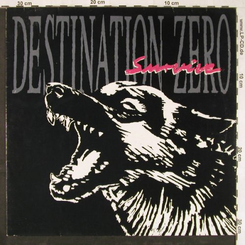 Destination Zero: Survive, Ruff'n'Rol(008-11501), D, 1990 - LP - E3270 - 5,00 Euro