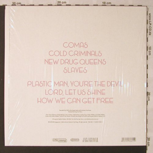Pink Mountaintops: Axis of Evol, City Slang(SLANG1038611), , 2006 - LP - F2318 - 12,50 Euro