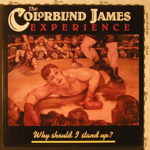 Colorblind James Experience: Why Should I Stand Up, Cooking Vinyl(COOK 028), UK, 1989 - LP - F2322 - 5,00 Euro