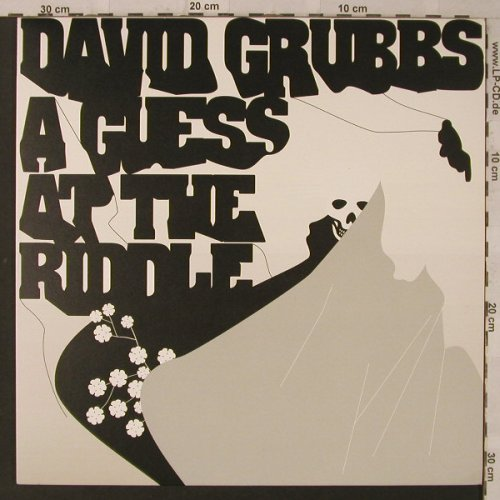Grubbs,David: A Guess at the Riddle, vg+/m-, Fat Cat(FATLP33), UK,  - LP - F2554 - 7,50 Euro