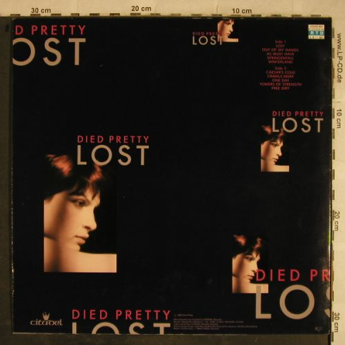 Died Pretty: Lost, Citadel(801), D, 1988 - LP - H9603 - 3,00 Euro