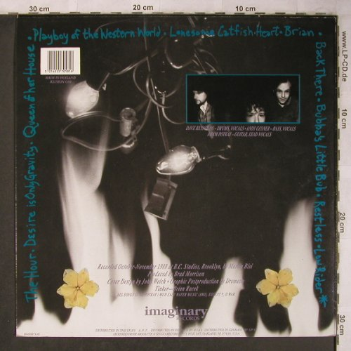 Spiral Jetty: Dogstar, Imaginary(Illusion 018), NL, 1990 - LP - X5123 - 7,50 Euro
