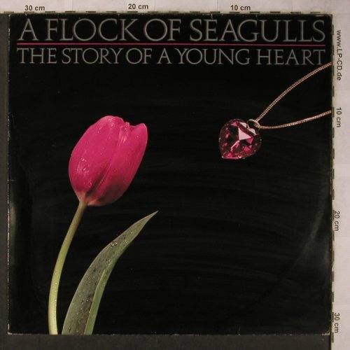 A Flock Of Seagulls: The Story Of A Young Heart, Jive(6.25933 AP), D, 1984 - LP - X5654 - 6,50 Euro