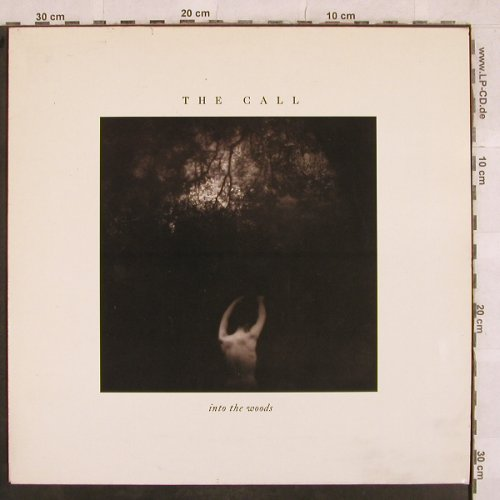 Call,The: Into The Woods, Elektra(960 739-1), D, 1987 - LP - X573 - 5,50 Euro