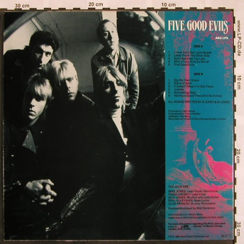 Playn Jayn: Five Good Evils, ABC(LP5), F, 1985 - LP - X860 - 7,50 Euro