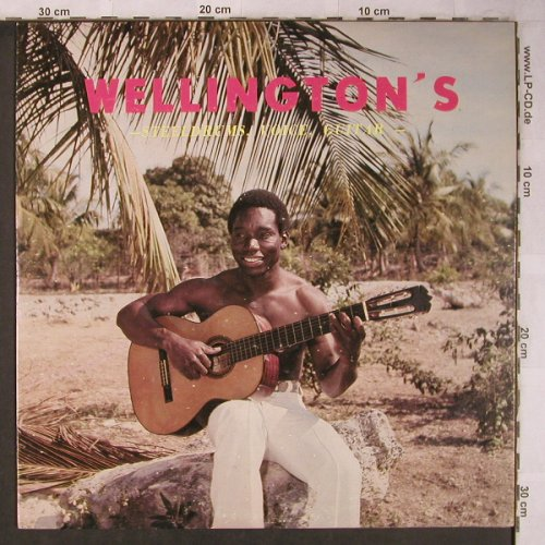 Wellington's: Steeldrum, Voice, Guitar, vg+/m-, (LP-003), ,  - LP - X5151 - 7,50 Euro