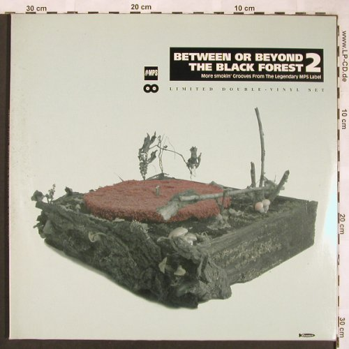 V.A.Between Or Beyond: The Black Forest 2, Foc,m-/vg+, Crippled Dick Hot Wax(cdhw 064), D, 2000 - 2LP - X1704 - 12,50 Euro
