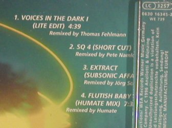 Schulze,Klaus: Voice in the Dark+3, Antilotti(), D, 96 - CD5inch - 90160 - 5,00 Euro