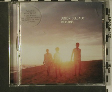 Junior Delgado: Reasons, Big Cat(), UK, 99 - CD - 99213 - 7,50 Euro