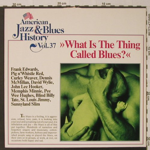 V.A.What Is The Thing Called Blues?: 12 Tr., m-/vg-, Tobacco Road(B/2537), D,  - LP - F4701 - 3,00 Euro