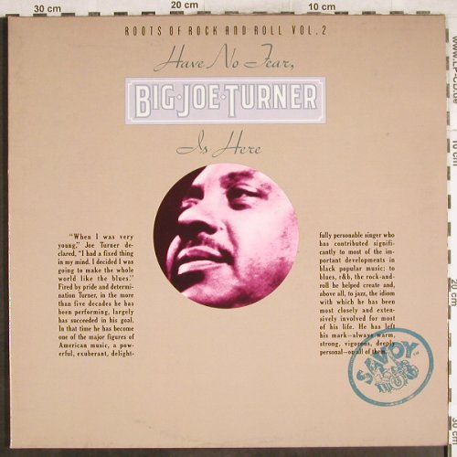 Turner,Big Joe: Have No Tear...Roots o.R'n'R Vol.2, Savoy(WL70822(2)), D, Foc, 1977 - 2LP - H7237 - 12,50 Euro