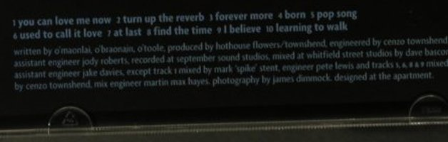 Hothouse Flowers: Born, London(), , 98 - CD - 96066 - 7,50 Euro