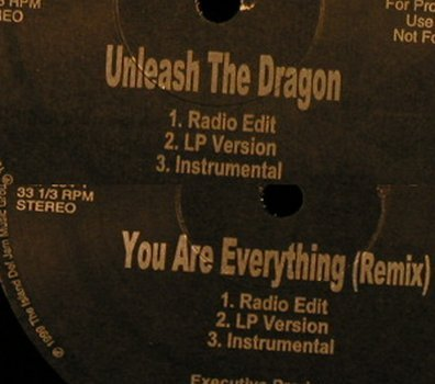 "Sisqo: Unleash The Dragon/Got to get it, DefSoul/Promo(DEF 394-1), US,FLC, 1999 - 12""*2 - B8886 - 3,00 Euro"