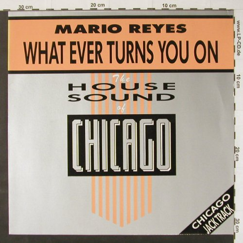 Reyes,Mario: What Ever Turns You On*2, DJ International(D.J. 12-1010-40), D,  - 12inch - C2935 - 4,00 Euro