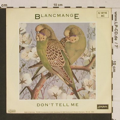 Blancmange: Don't Tell Me / Get Out Of That, London(6.14116 AC), D, 1984 - 7inch - T627 - 2,00 Euro