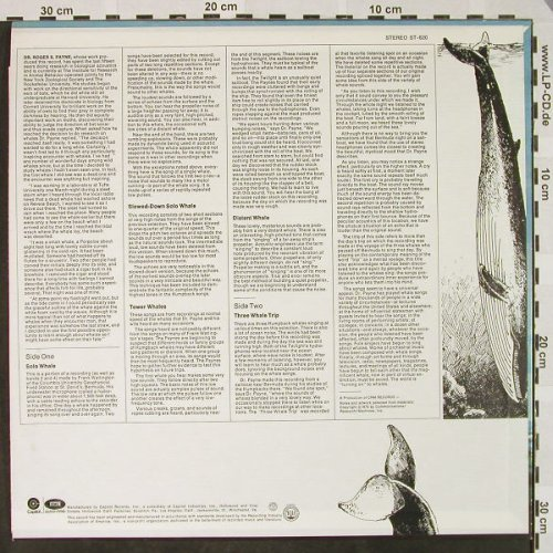 Humpback Whale: Songs of the , Ri, Capitol(ST-620), US, 1970 - LP - H4516 - 5,00 Euro