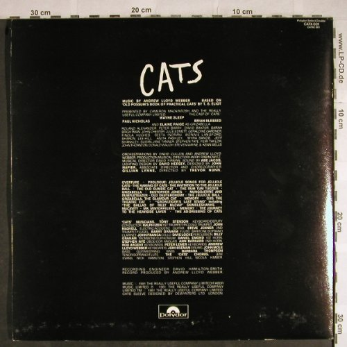 Cats: Music by Andrew Lloyd Webber,Foc, Polydor(CATX 001), UK, 1981 - 2LP - H8428 - 7,50 Euro