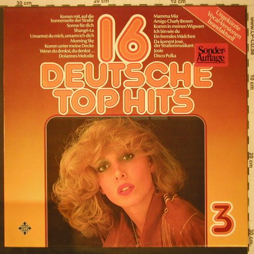 V.A.16 Deutsche Top Hits: 3, Vocal Versionen, Telefunken(6.22483 AF), D, 1976 - LP - C6582 - 3,00 Euro